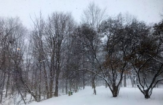 Winter things to do in Michigan: These 10 things will help you embrace the season. Pictured: Winter in Michigan.